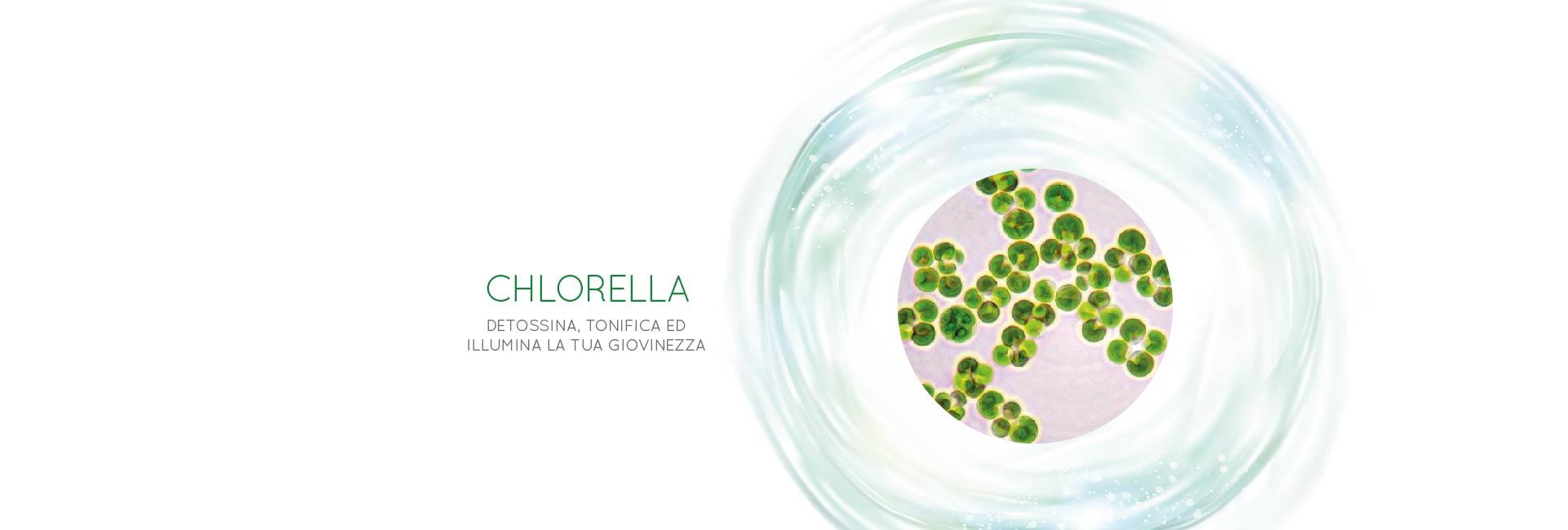 dermoalgae-bellezza-viso_chlorella